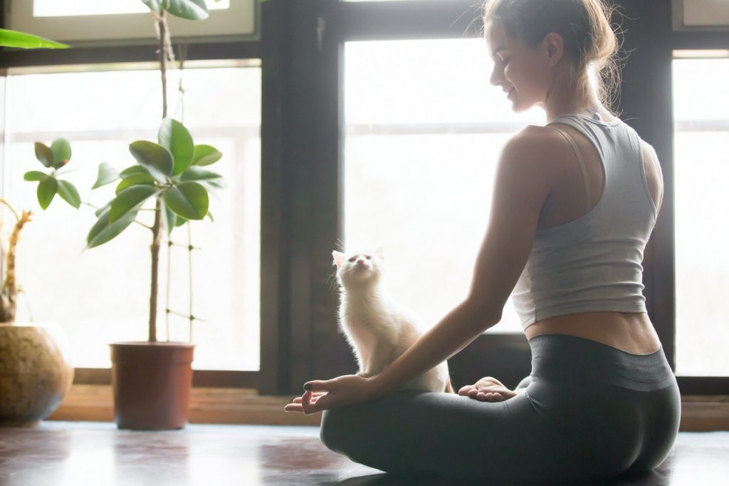 Yoga Nidra the cultface
